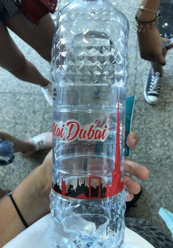 czego nie można w Dubaju4